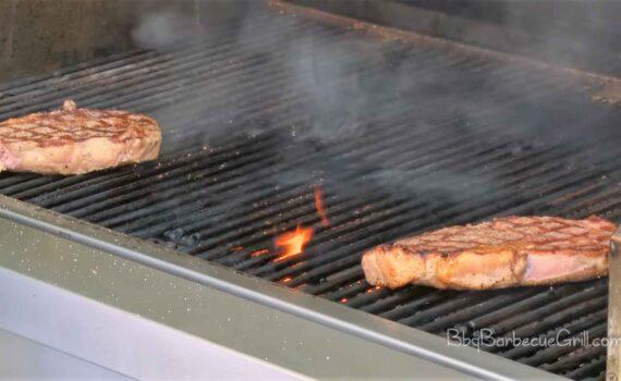 Best propane tailgate grill