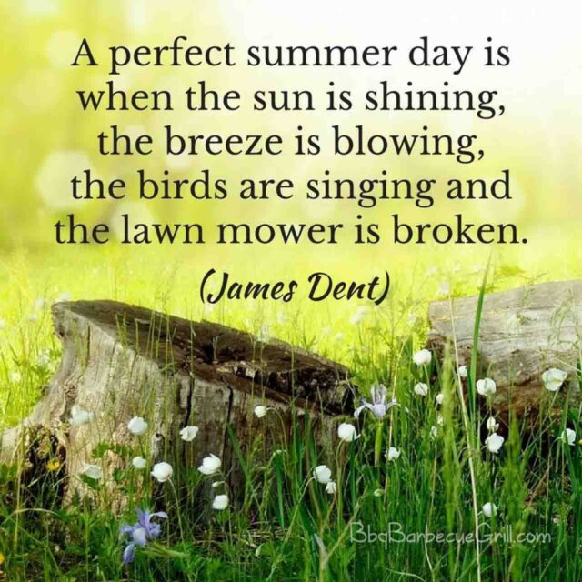 A perfect summer day is when the sun is shining, the breeze is blowing, the birds are singing and the lawn mower is broken. (James Dent)