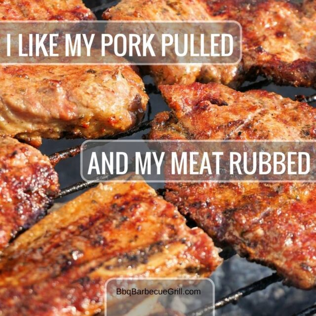 Funny Bbq Quotes - I like my pork pulled and my meat rubbed.
